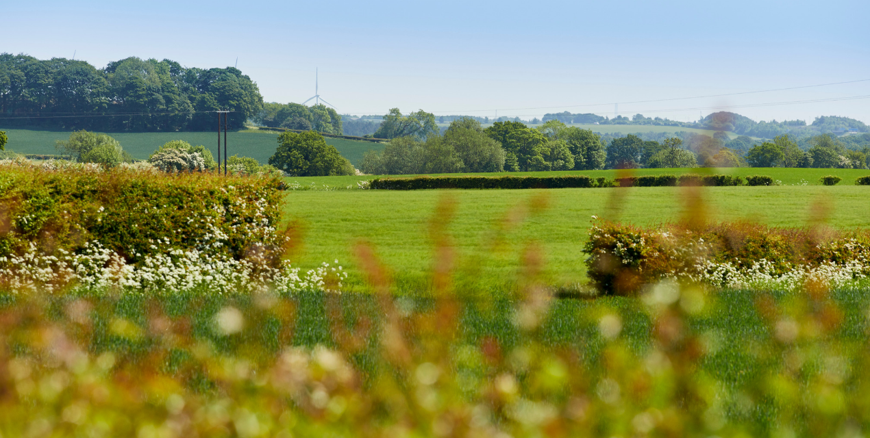 Leeds Countryside Views - Chartford Homes